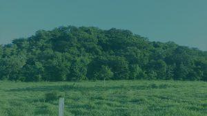 fundo-meio-ambiente-300x169 fundo-meio-ambiente
